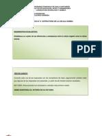 PRACTICA DE LABORATORIO DE BIOLOGIA UFPS N° 6