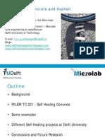 Schlangen_SelfHealing_Betonica-webinar-2012.pdf