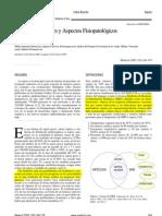 Briceño, I (2005)-  articulo de profundización en definiciones y fisipatología SEPSIS