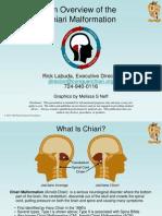 Chiari Overview 2010