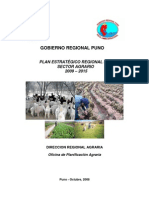 Plan Estrategico Regional Agrario 2009