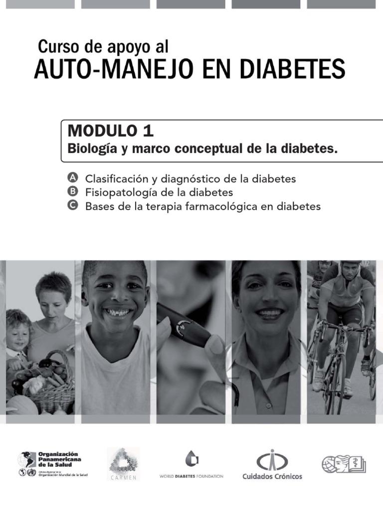 metformina tipo 1 diabetes embarazo apoyo