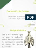 Examen Del Cadaver