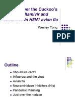 Zanamivir in H5N1