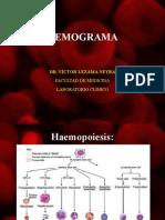 4.HEMOGRAMA