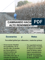 1. El Programa Estrategico de Maiz de Alto Rendimiento (PROEMAR)_Ernesto Cruz Gonzalez