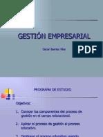 gestion-empresarial-1207430998957593-8