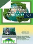 Gestión Ambiental  y Protección Ambiental