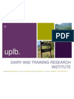 STR1 - Dairy Training and Research Institute