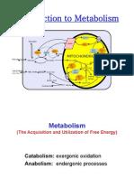 1 Metabolism Metabolic Pathways 160712