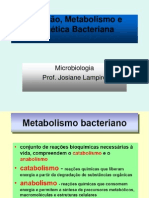 nutrição, metabolismo e genética bacteriana
