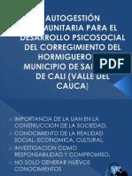 AUTOGESTIÓN COMUNITARIA PARA EL DESARROLLO PSICOSOCIAL DEL CORREGIMIENTO