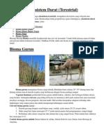 Ekosistem Darat ( Bioma)