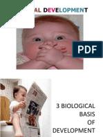Che Prenatal Development