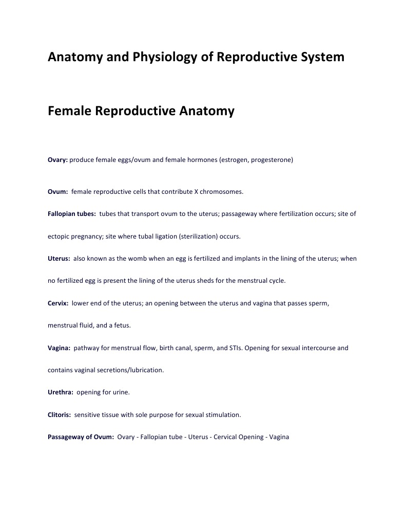 Anatomy and Physiology of Reproductive System | Menstrual Cycle ...