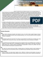 AgronegocioBrasilemFoco_16-05-12 (1)