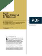 Corbi de Piatra - Studiu Interdisciplinar - Cauze şi Forme Specifice de Degradare (Cap. 6)