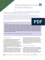Blueprint for Telerehab Guidelines