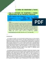 Análisis del índice de elasticidad y fuerza reactiva