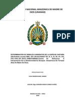 DETERMINACIÓN DE ÁRBOLES CANDIDATOS DE LA ESPECIE CASTAÑA (Bertholletia excelsa HBK)