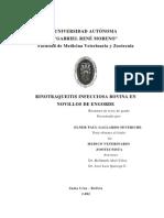 Bovinos Gallardo Resumen Tesis-20101119-103741