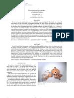 La Ocarina de Zanahoria - Choque Saire M. P.