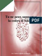 Tu ne peux supporter la colère d'Allâh