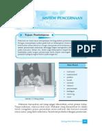 5. Sistem Pencernaan