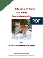Como Educar a Un Akita Con Malos Comportamientos