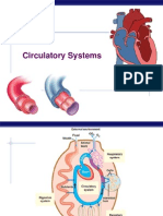 Circulatory System AP Bio