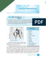 6. Sistem Pernafasan