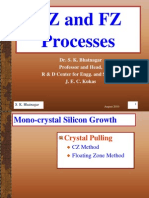 LJ04 CZ FZ Processes Aug2010
