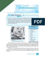 9. Sistem Reproduksi