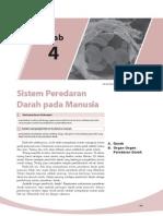 4. Sistem Peerdaran Darah Pada Manusia