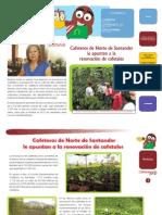 Edición N° 11 Boletín Institucional Cafeteando Ando - Agosto 2012