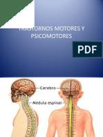 Trastornos Motores y Psicomotores