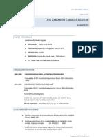 CV Arq. Luis Canales