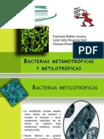 Bacterias metanotrófcas y metilotróficas