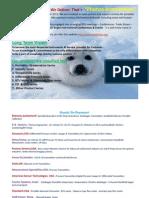 Overview Catalogue Photon