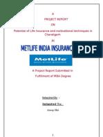 Metlife Sales