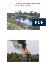 Do Not Pollute the Environment PPT Presentation