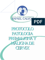 Protocolo Patologia Premaligna y Maligna de Cervix