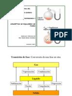 2008+I+12+Diagrama de Fases+Adicional