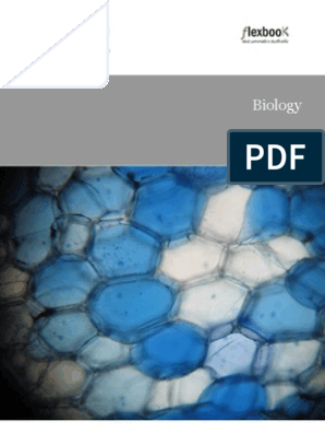 Dark /& Light Blue circles on Blue fabric fq 50 x 56 cm 100/% Cotton F508-8
