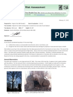 Stadium Woods tree asessment report