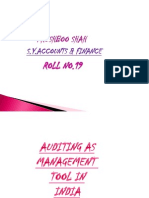 Auditing as Mgmt Tool