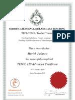Te Fl Certificate