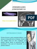 enfermedades-cromosomicas-