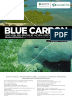 Blue Carbon - First Level Exploration of Blue Carbon in the Arabian Peninsula