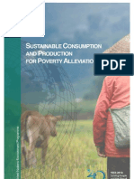 Sustainable Consumption and Production for Poverty Alleviation